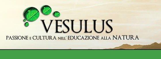 Associazione Vesulus